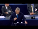 Orban im EU-Parlament- -Liberale hassen mich mehr- als sie ihr eigenes Land lieben-