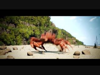 Танцующий краб  [вставка для видео монтажа] crab rave.mp4