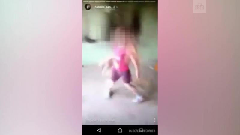 Подростки вместе с семилетней девочкой убили котенка под Самарой