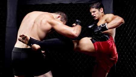 Смешанные боевые искусства - это единоборство, в котором сочетаются техники разных боевых искусств.