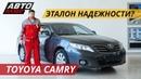 Лучше старая Toyota Camry или новый Hyundai Solaris Подержанные автомобили