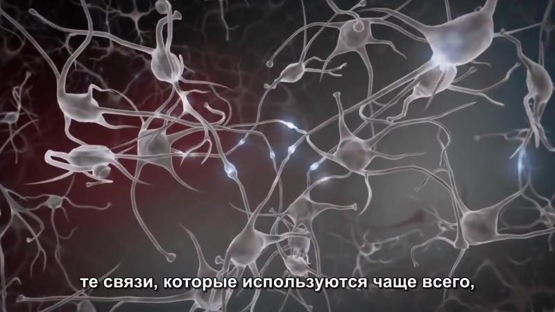 Нейропластичность детского мозга