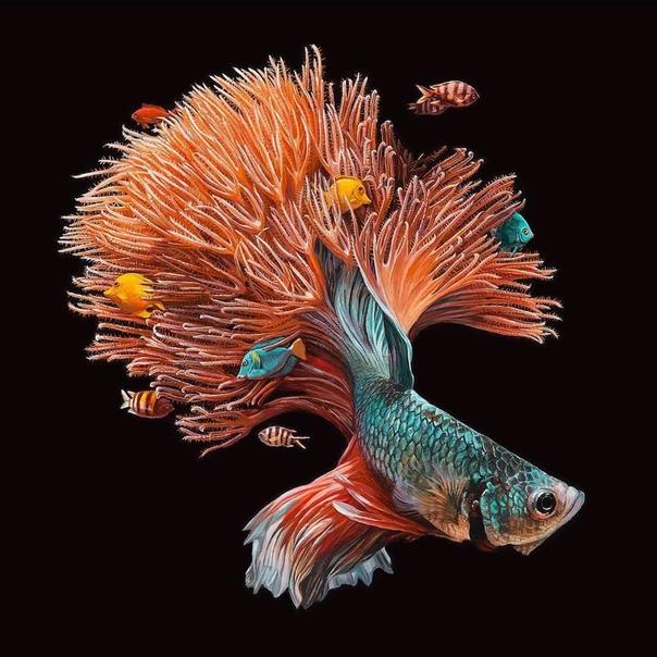 Гиперреализм: Вымышленная морская среда Художник, иллюстратор и дизайнер Лиза Эриксон (Lisa Ericson) создает гиперреалистичные образы воображаемых животных, рыб, различных гибридов, которые