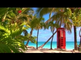 Jazz Music _ Smooth Jazz Saxophone _ Relaxing Background Music with the Sound of