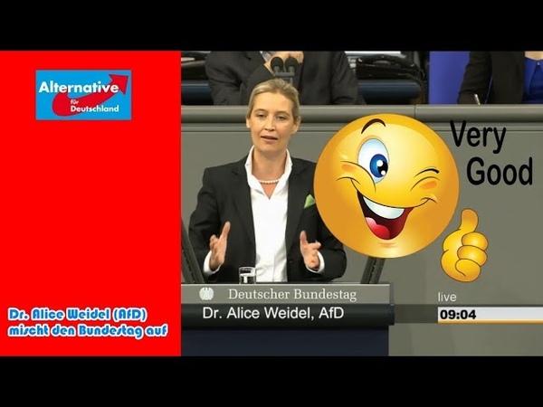 Hammer-Rede von Dr. Alice Weidel (AfD): Sie wollen über Parteispenden reden? Dann tun wir es