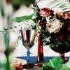 Оформление декор свадеб праздников Москва