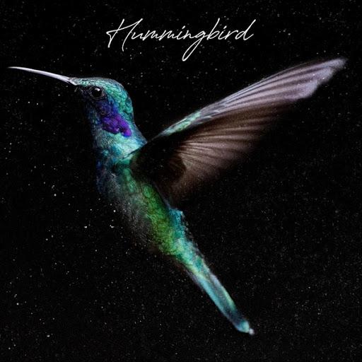 Paul Taylor альбом Hummingbird