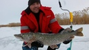 Трофейная щука рыбалка с подписчиками до обеда озеро Круглое