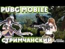 Оптимизирую стрим с PUBG mobile, тащим каточки. prt2