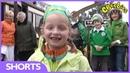 CBeebies Celebrating St Patrick's Day Let's Celebrate