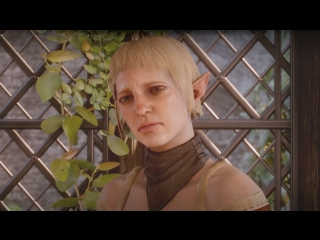 Dragon Age: Inquisition — Сэра не одобряет