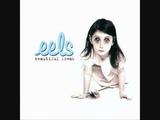 Eels - My Beloved Monster