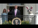 Trump Loves The Easter Bunny