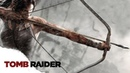 Запись стрима 17.01.2019 Tomb Raider