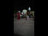 Фламенко с лошадкой