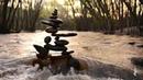 Motion zen