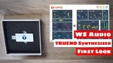 Trueno Analog Digital USB SYNTHESIZER - First Look &amp Sound Demo
