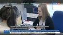 Новости на Россия 24 • Гектары в Хабаровском крае выбирают с помощью гаджетов