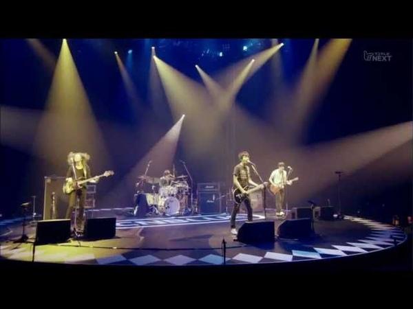 CNBLUE - I dont kow why @ Yokohama Japan 392 live 2011.9