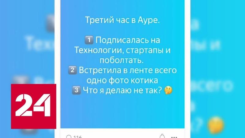 Яндекс приступил к тестированию своей социальной сети - Россия 24