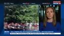 Новости на Россия 24 • Нет преступной власти участники АТО заблокировали офис Порошенко