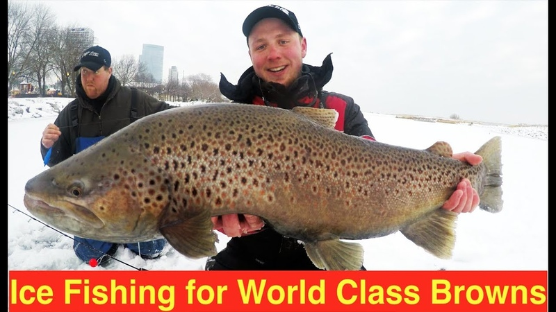 Ice Fishing for World Class Brown Trout