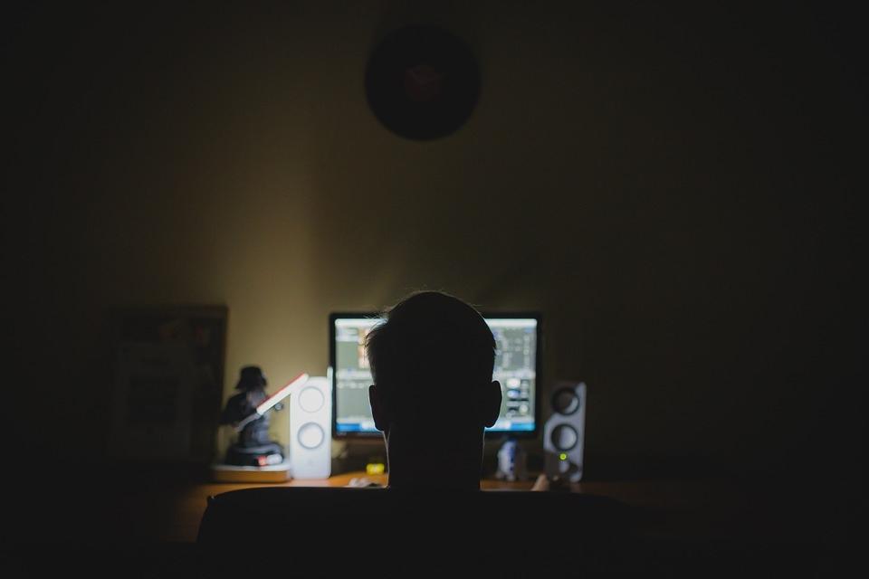 В Марий Эл жители продолжают терять деньги на сайтах-двойниках