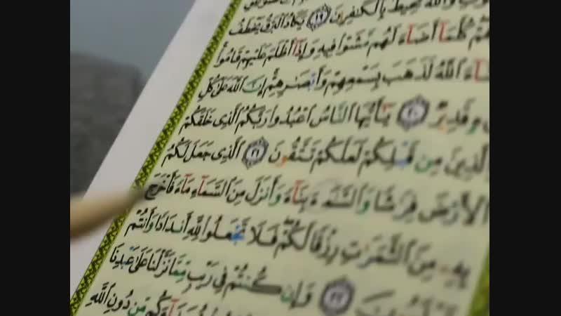 Коран с опечатками. часть 2