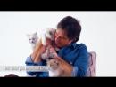 Йен Сомерхолдер Деймон в рекламной кампании Royal Canin