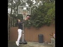 DOG THROWS SICK ALLEY OOP TO MAX PEARCE
