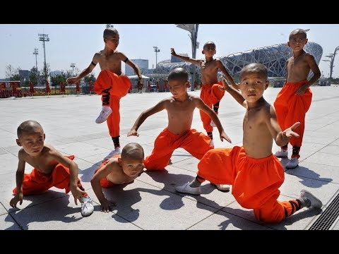 Don't Mess With KungFu Kids | Kids Born to Fight