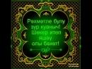 Doc376629235_452473395.mp4
