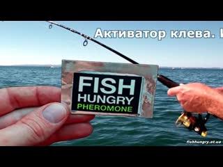 Активатор клёва «fish hungry» инструкция по применению - fishhungry.at.ua