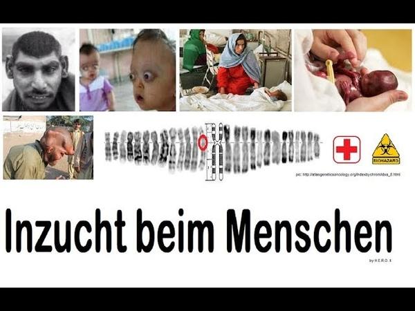 Inzuchtehen in islamischen Kulturen 1/3 TABU - für DE zugelassene Fakten - Doku Deutsch - Bildung