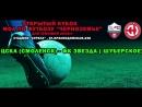 Live Детская Футбольная Лига Воронежской Области