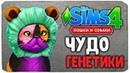 ЧУДО ГЕНЕТИКИ, САМАЯ СМЕШНАЯ КОШКА - The Sims 4 Кошки и Собаки