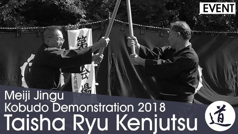 Taisha Ryu Kenjutsu - Nishijima Junichi - Meiji Jingu Kobudo Demonstration 2018