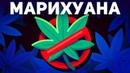 3 Аргумента, Почему марихуана должна оставаться нелегальной Kurzgesagt на русском