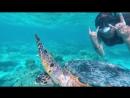 DivingGirl 💦 l Love Maldives 🐠 XXX