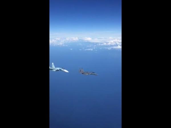 Су-27 жёстко отогнал истребитель НАТО от правительственного борта