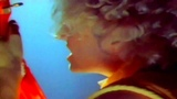 Sammy Hagar - Two Sides Of Love (Official Video HD)