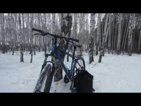 Зимние движухи в ЕКБ лыжню уступите парню лыжню