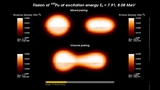 Fission of Pu240 in Real-Time