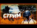 19 ПЕРВЫЙ СТРИМ С ВЭБКОЙ PUBG MOBILE PUBG PLAYERUNKNOWN'S BATTLEGROUNDS ПУБГ ПАБГ