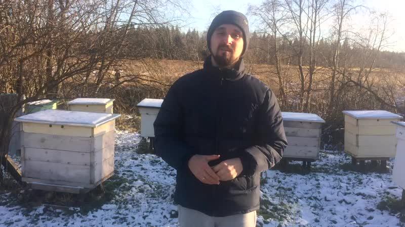 Полезный крем-мёд для здоровья людей и пчёл