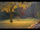 Татьяна Снежина Желтые листья