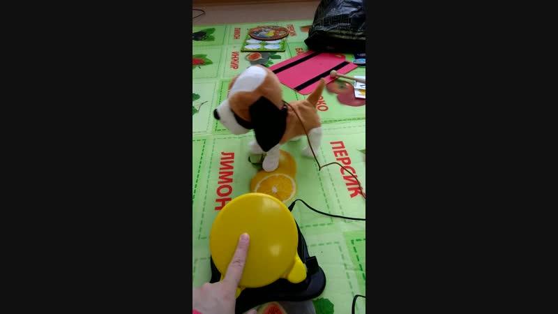 Коммуникативные игрушки