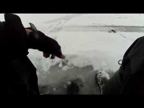 Ловля судака на Обском Водохранилище