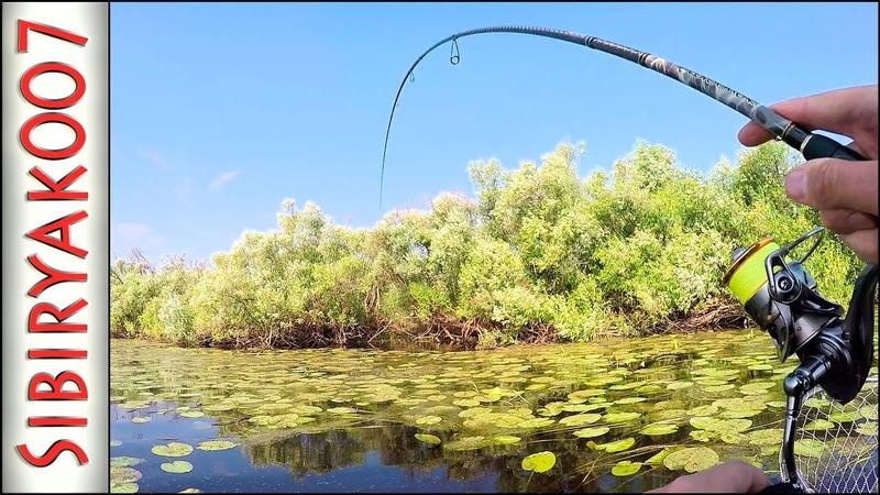 Рыбалка на щуку Ловля в траве АЗАРТНЫЕ поклёвки Природа дикой реки Неогруженная резина Блёсны