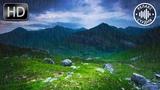 Нежный Шум Дождя Без Грома и Без Музыки. 10 Часов Релакса Для Глубокого Сна